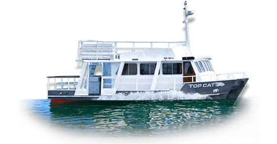 top-cat Lake Taupo Cruises | Taupo Boat Charters | Private Boat Charters {keyword}